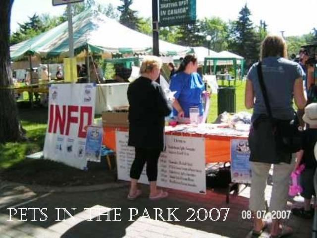 2007 PIP - Info table